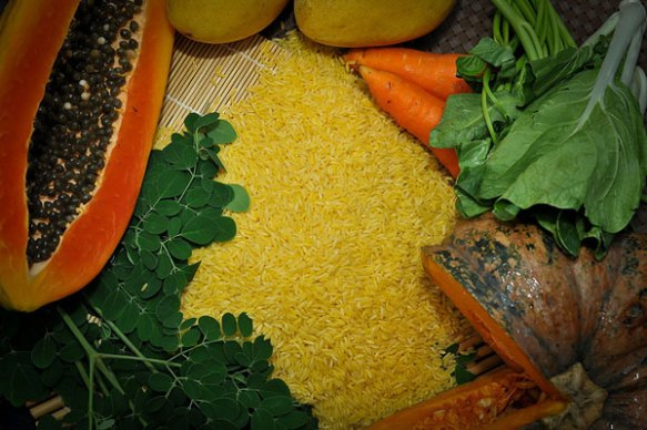 golden-rice-about2