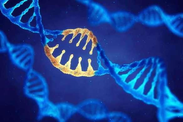 editing genomico