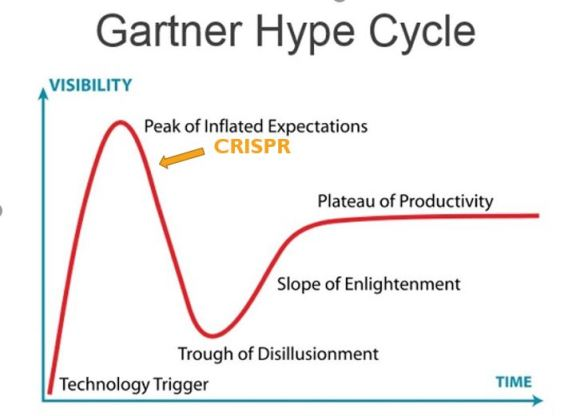 Hype Cycle eng